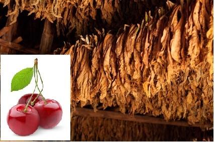 Cherry Pipe Aroma01